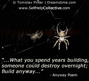 Anyway poem - some words, and image of spider & web