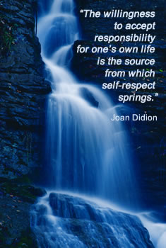 High self esteem quote by Joan Didion