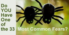 Image of 2 spiders with spooky eyes!...