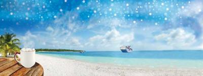 Cruise that my team and I will be taking Dec. 2011